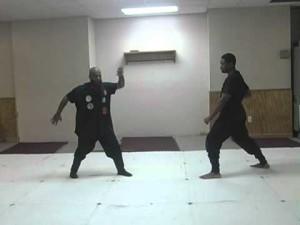 The Principle of Taijutsu: The First Line of Defense